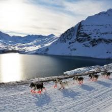 L'UFH partenaire de la Grande Odyssée Savoie Mont-Blanc du 7 au 18 janvier 2017